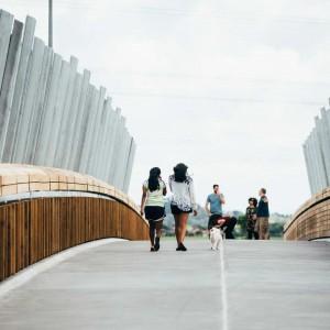 Isthmus_Taumanu_Reserve_Bridge_6