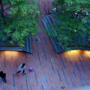 Archipelago Courtyard was conceived based on a series of smart decisions. There are no unnecessary barriers to allow for activities of various age groups. Two (and a half) 'islands' were introduces covered with timber for a cozy seating each containing one or more Gleditsia Triacanthos trees, which (intentionally or not) reminds of Paley Park some 5 miles up north in Manhattan.
