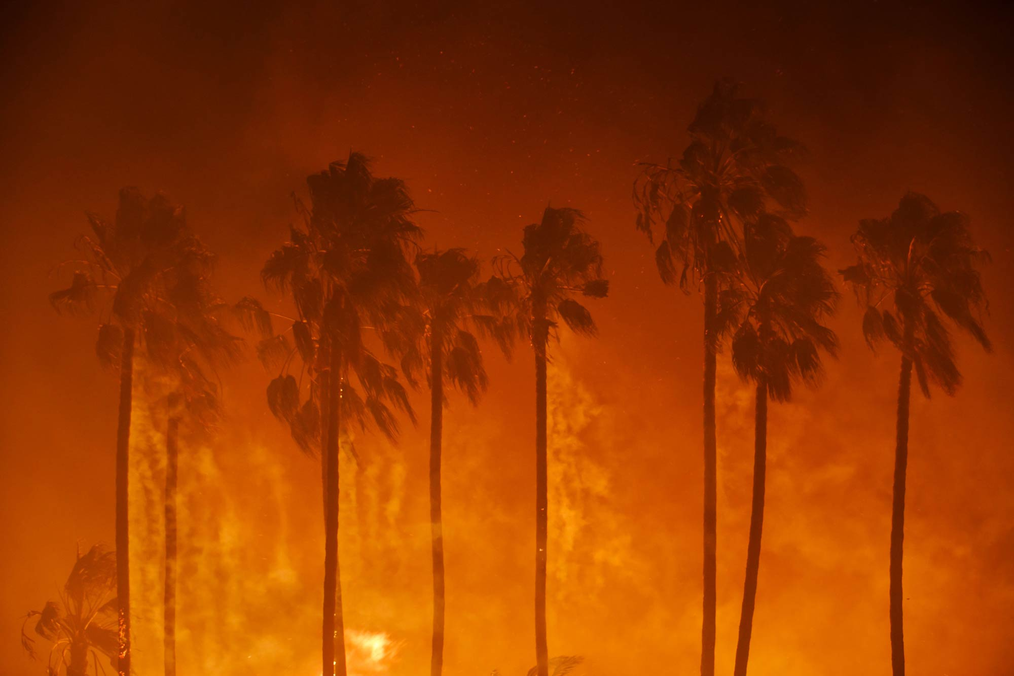 Title image: Smoke blows out of the burning palm trees as brush threatens homes in Ventura County. (© Marcus Yam / Los Angeles Times via Getty Images, 5 December 2017)Kelly Shannon is a professor of urbanism at KU Leuven's Department of Architecture.